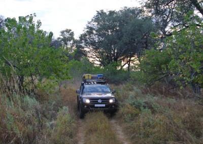 botswana_2015_16